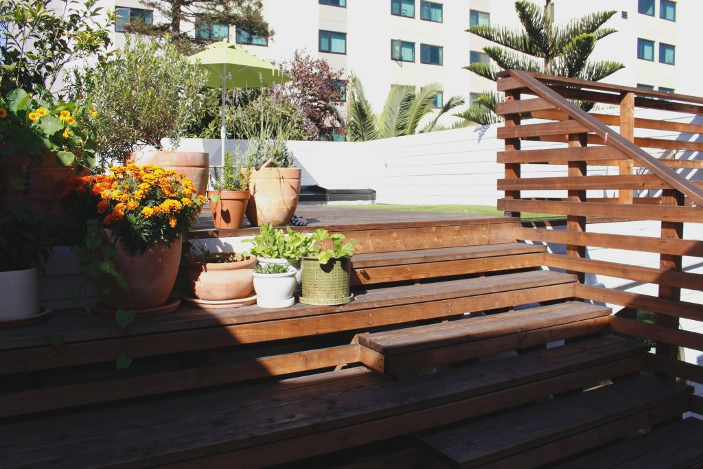 wooden steps to the deck // Carriage House by Sky Lanigan for Medium Plenty